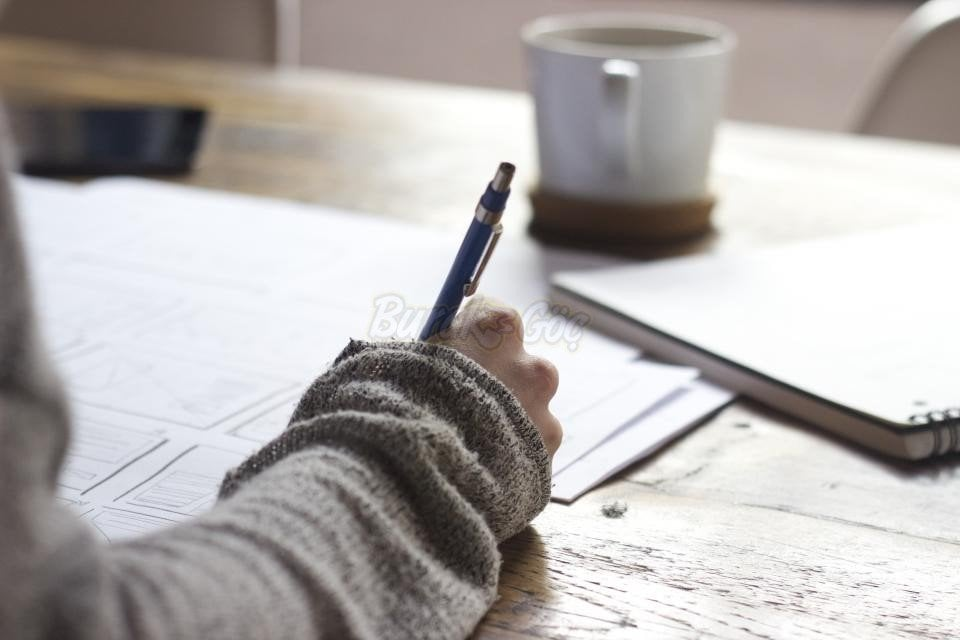 vize ve final sınavı